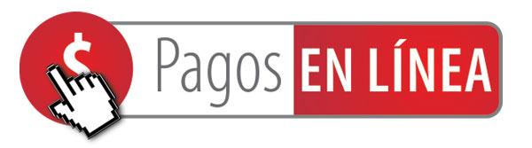 PAGOS-EN-LINEA